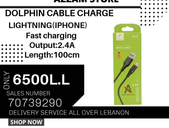 dolphin charge cable