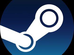 Steam account for sale games:(rainbow six siege digital edition and pubg steam.(40$)
